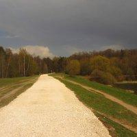 IMG_6821 - Кажется, дождь собирается :: Андрей Лукьянов