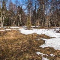 Весна :: Дмитрий Люльчак