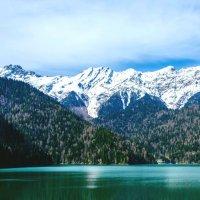 Озеро Рица :: Андрей Володин