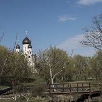 Храм Серафима Саровского. :: Яков Реймер