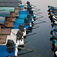 Причал Bamboo boat :: Игнат Веселов