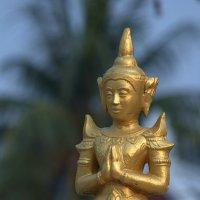 Почитая Будду :: Евгений Печенин