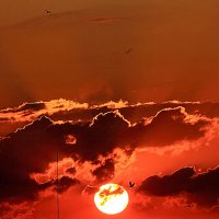 Долететь до солнца :: Alexander