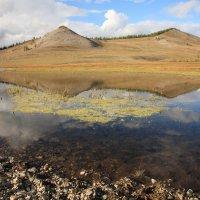 Монгольский пейзаж. :: BORIS LAMBERT