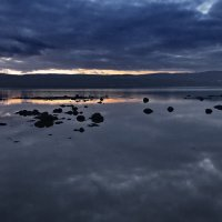 Кольский залив. :: kolin marsh