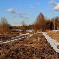 Апрель-Снегогон. :: mike95