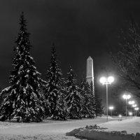 Уфа (Монумент дружбы народов) :: Константин Вавшко
