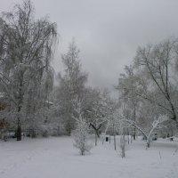 Весна...апрель... :: Алёна Савина