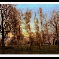 Осень :: Ольга Устинова