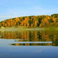 Осень на Томи :: Милешкин Владимир Алексеевич