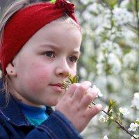 весна :: Наталья Лачкова