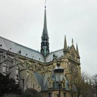 Собор Парижской Богоматери (Notre Dame de Paris) :: Galina Belugina