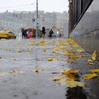 осень по Московски :: Владимир Гулевич