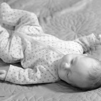baby :: Sacha Bouron
