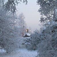Свет ушедшей зимы.... :: Оксана Н