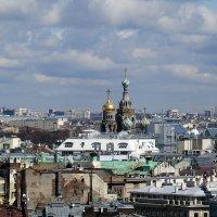 Вид с колоннады Исаакиевского собора :: Татьяна Осипова(Deni2048)