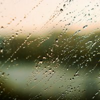 rain /Moscow 2015 :: Pasha Zhidkov