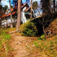 Дом Яна Сибелиуса, Финляндия. :: Дарья :)