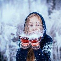 Зимнее настроение :: Вера Кононова