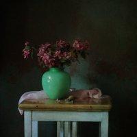 Цветы яблони и улитка. :: Елена
