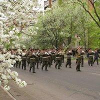 Весна. Душа поёт! :: Виктор Никаноров
