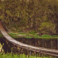 Мост :: Инна Голубицкая