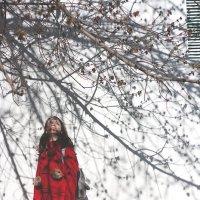 Весна :: Екатерина Сейба