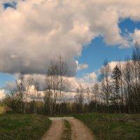 Дорога в деревню. :: Владимир Гилясев