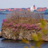 Цветущий остров. :: Павел Бескороваев