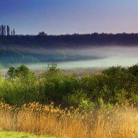 Утренний туман.. :: Юрий Стародубцев