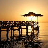 Восход на Красном море :: Татьяна Нижаде