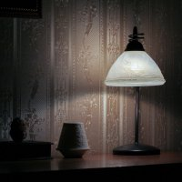 Свет и тень :: Герман