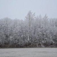 ОКРЕСТНОСТИ, МОЙ СТАДИОН. :: Виктор Осипчук