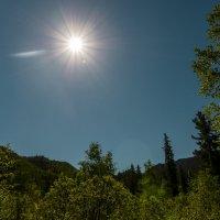сибирское солнце :: Ирэн