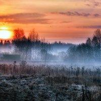 Туман... :: Максим Сорокин