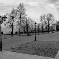 парк :: Антон Панфёров