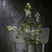 Весенний ... :: Svetlana Sneg