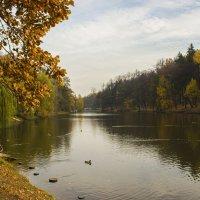 Золотая осень в Царицыно :: Дмитрий Климов