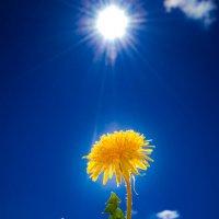 Не важно в каком мире Ты живешь, Важно какой мир живет........в Тебе.... :: Ирина Малинина