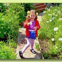 Белая ромашка расцвела в саду! Это к ней так быстро я сейчас иду... :: Людмила Богданова (Скачко)