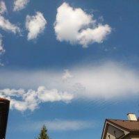 просто небо сегодня :: Ольга Богачёва
