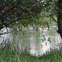 Тихо струится река серебристая В царстве вечернем зеленой весны. :: Нади часоК