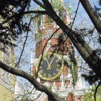 Спасская башня :: Маера Урусова