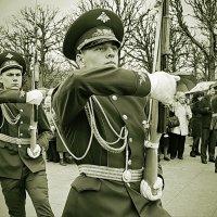 Почетный караул :: Василий Богданов