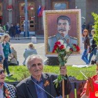 Слава Сталину :: Дмитрий Сушкин
