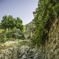 Лестница в заброшенный сад :: Gennadiy Karasev