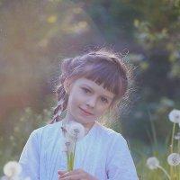 Одуванчиковая весна :: Наталья Кирсанова