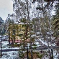 Весенняя графика моего двора или снегопад 9 мая 2015 г. :: Светлана Игнатьева