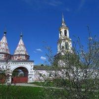 женский монастырь,весна :: Сергей Цветков