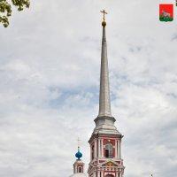 Мичуринск (Козлов). Ильинский храм :: Алексей Шаповалов Стерх
